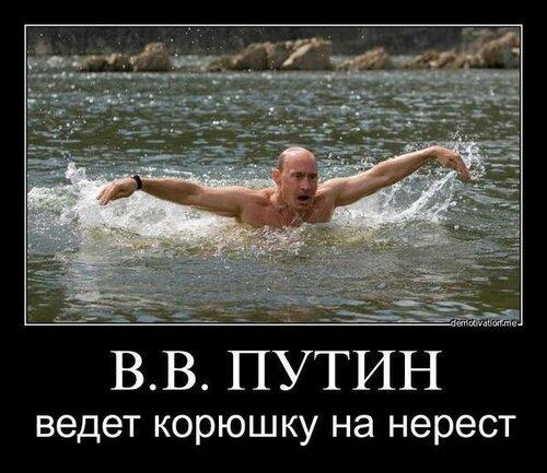 0_a8fab_38b0ce09_L.jpg