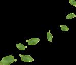 DBB_gardenflowers_el12.png