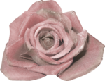 glitter fabric flower-(loucee).png
