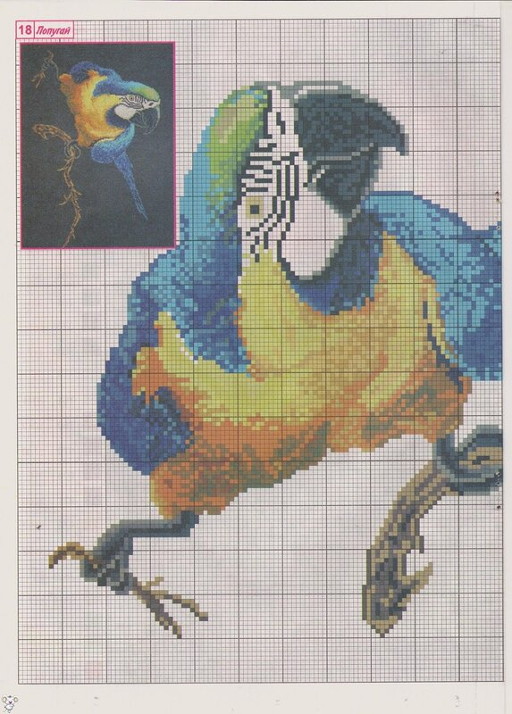 схемы вышивки попугаев — схемы