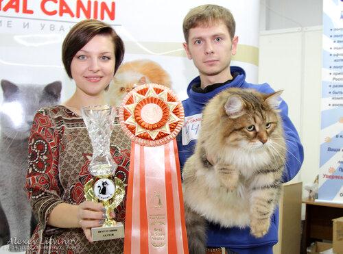 http://img-fotki.yandex.ru/get/6523/135140311.42/0_94647_f7eea46_L.jpg