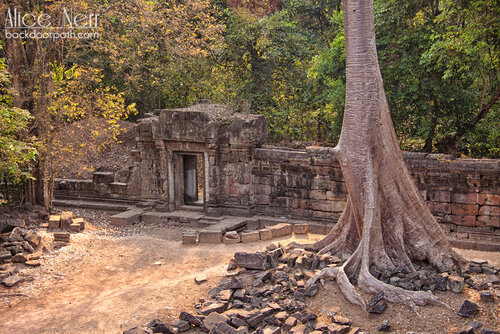 стены Ангкор Тома, Angkor Thom