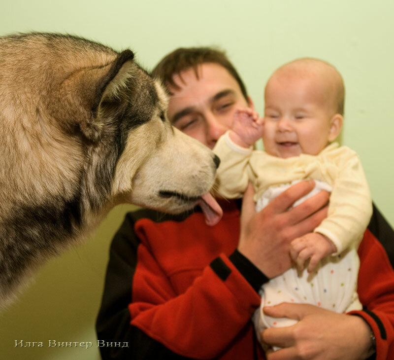 http://img-fotki.yandex.ru/get/6523/19735401.9d/0_6bf98_10e6ad2f_XL.jpg