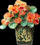 ldavi-bunnyflowershop-pottedflower9a.png