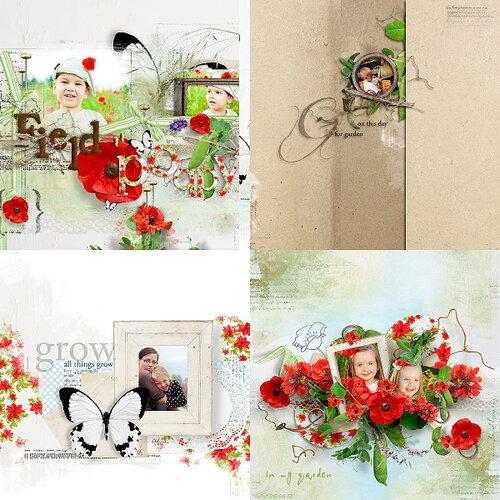 «In My Garden» 0_95bbb_b452120d_L