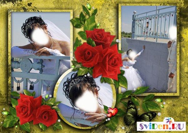 http://img-fotki.yandex.ru/get/6523/41771327.31c/0_8142c_31117f71_orig.jpg