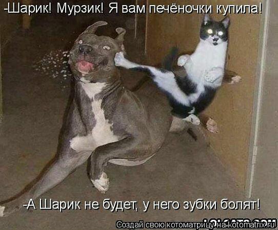 http://img-fotki.yandex.ru/get/6523/59709858.1d/0_ef6f7_d4525653_XL.jpg