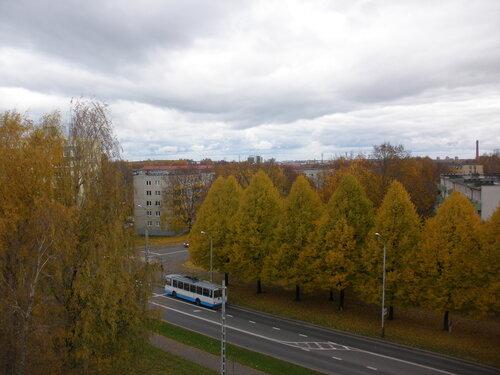 Золотая осень. Еще вчера.