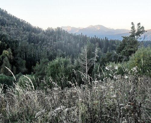 Утро на горной тропе, сентябрь 2012