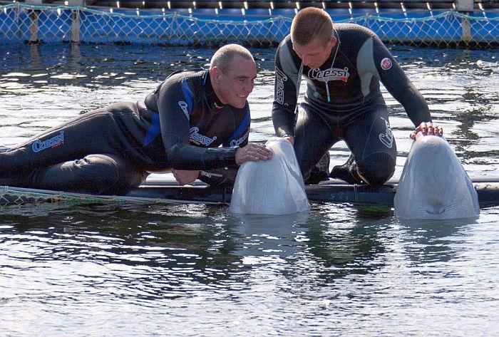 Винни Джонс побывал в океанариуме на острове Русский