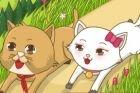 Царства котят - игра для девочек винкс