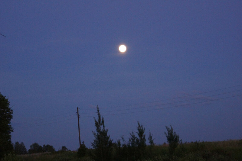 Едем домой под яркой луной
