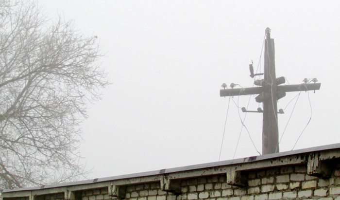 туман на революционной улице.jpg