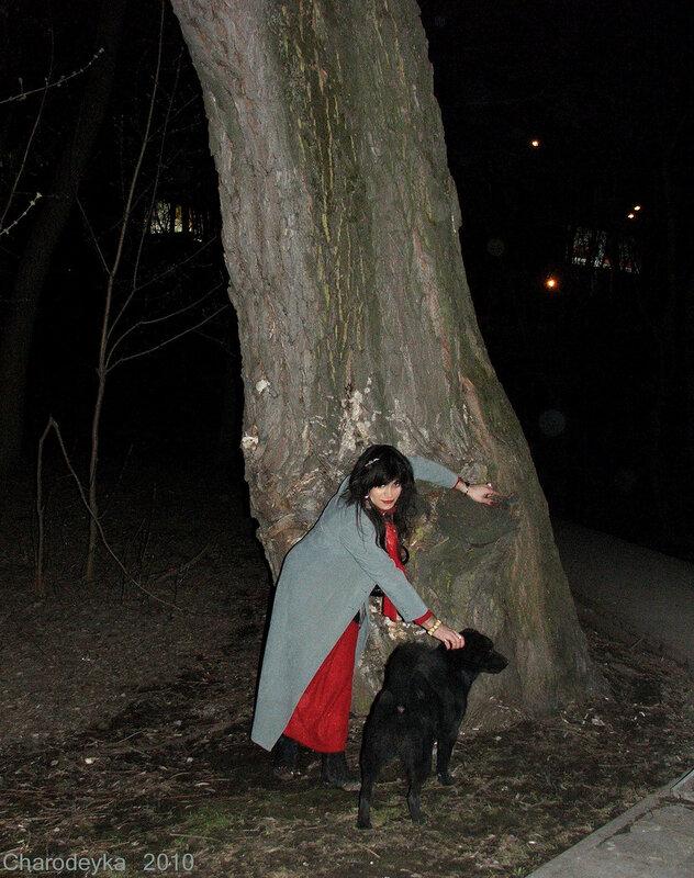 973.37 У старого дерева
