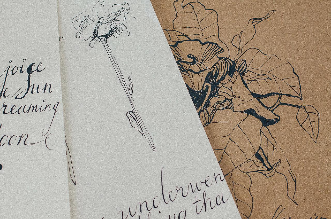 Flowers-calligraphy-may-katyalisich-2015-2.jpg