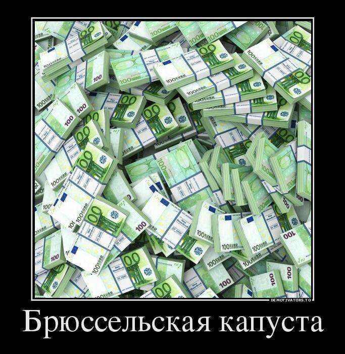 64262841_bryusselskaya-kapusta.jpg
