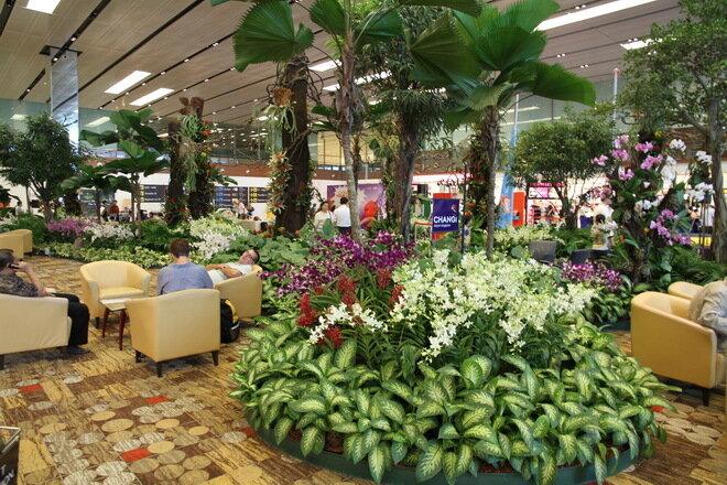 Аэропорт Чанги. Сингапур