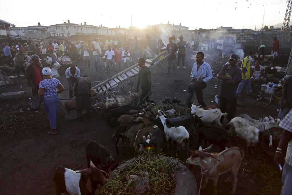 Мясокомбинат под открытым небом в Гаити
