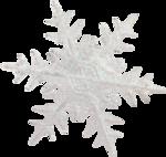 Geraldine's Winter (43).png