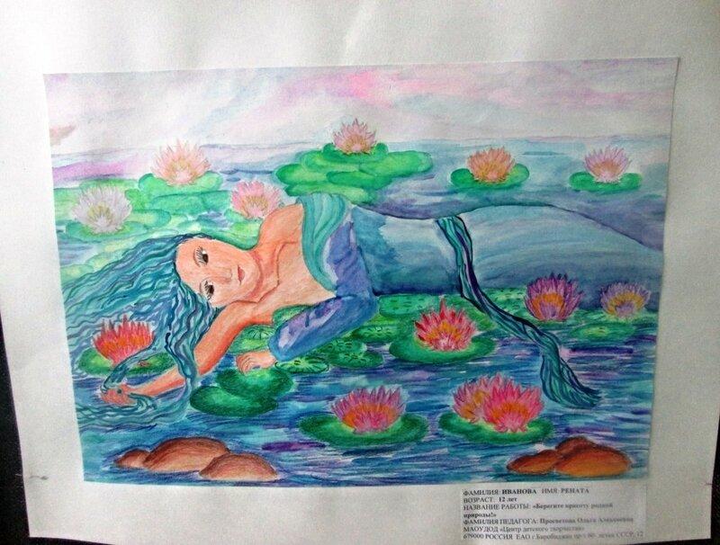 водно-болотные угодья