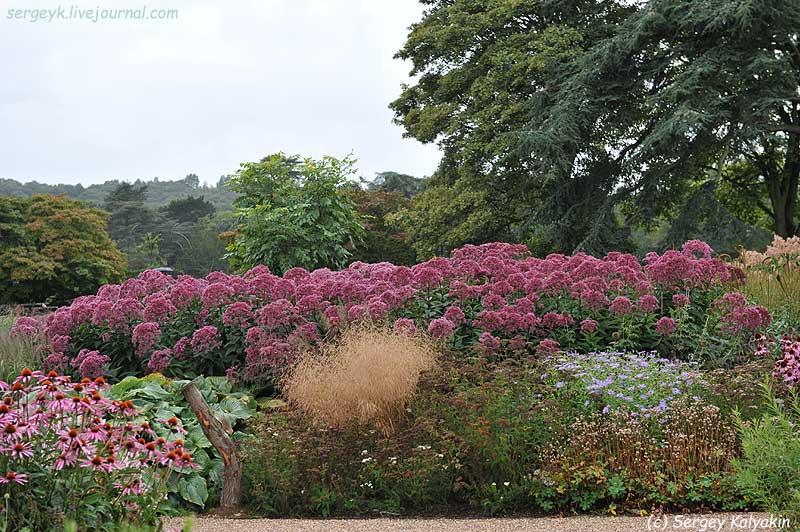 Trantham Gardens 317.JPG