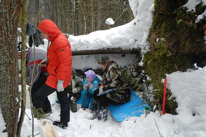 Пикник в снежном лесу на заячьей поляне у поваленной ели
