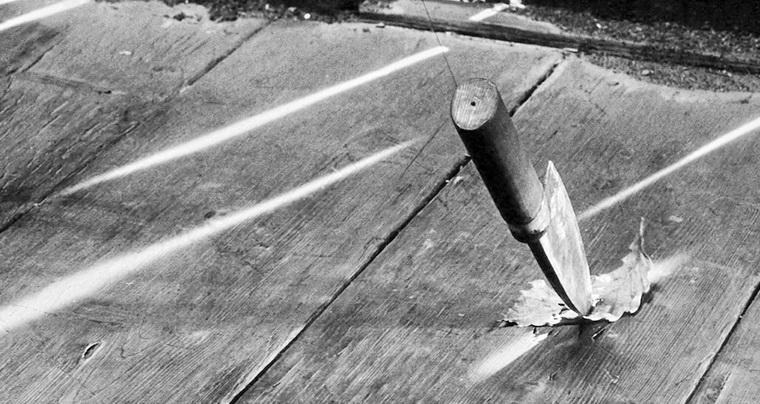 1961 - Телохранитель (Акира Куросава).jpg