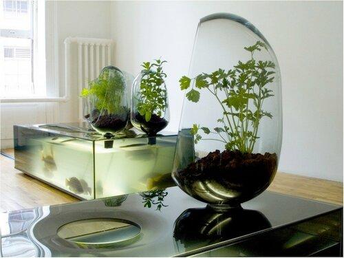 Экодизайн домашних аквариумов
