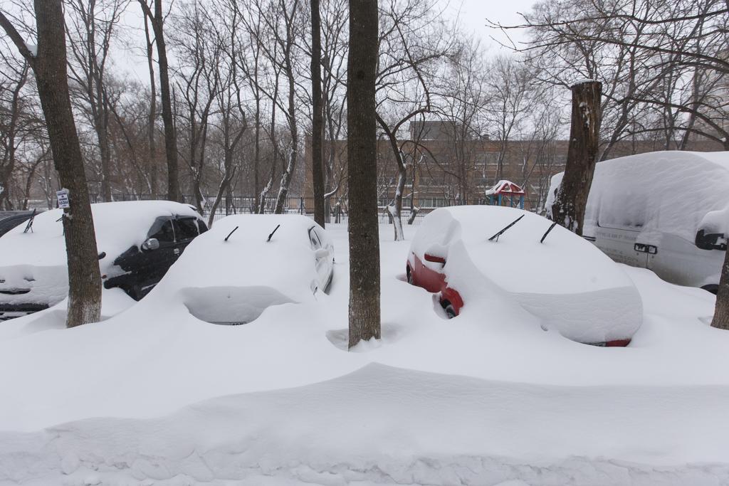 Картинки по запросу владивосток много снега