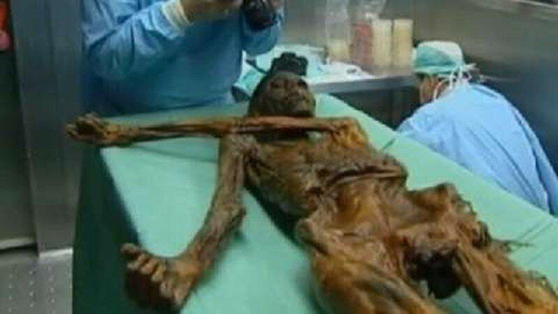 Как выглядел человек 5000 лет назад