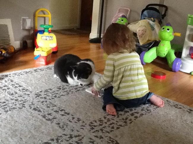 Когда девочка узнала, что кошка болеет (унее артрит), она решила, что должна хоть как-то помочь, и