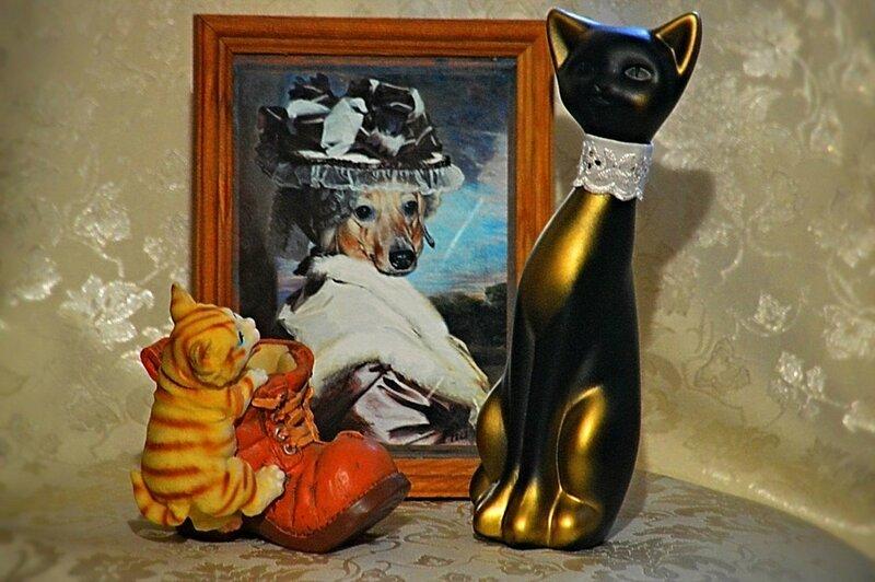 Победители конкурса «Как кошка с собакой»