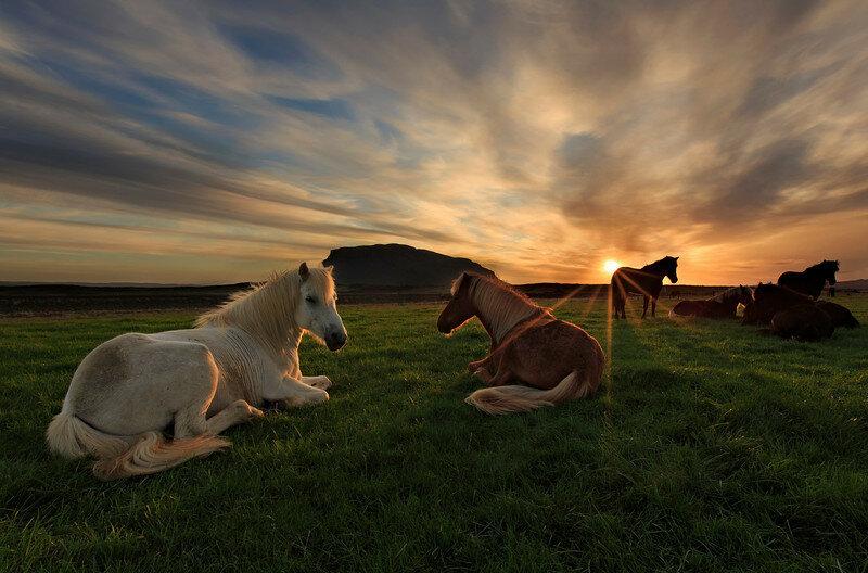 Невероятно красивые фотографии Исландии 0 1b7c0f eee2a12c XL