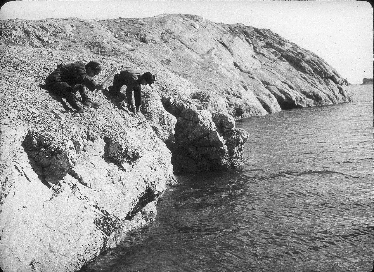 1937. Новая Земля, залив Черная Губа. Сбор окаменелостей
