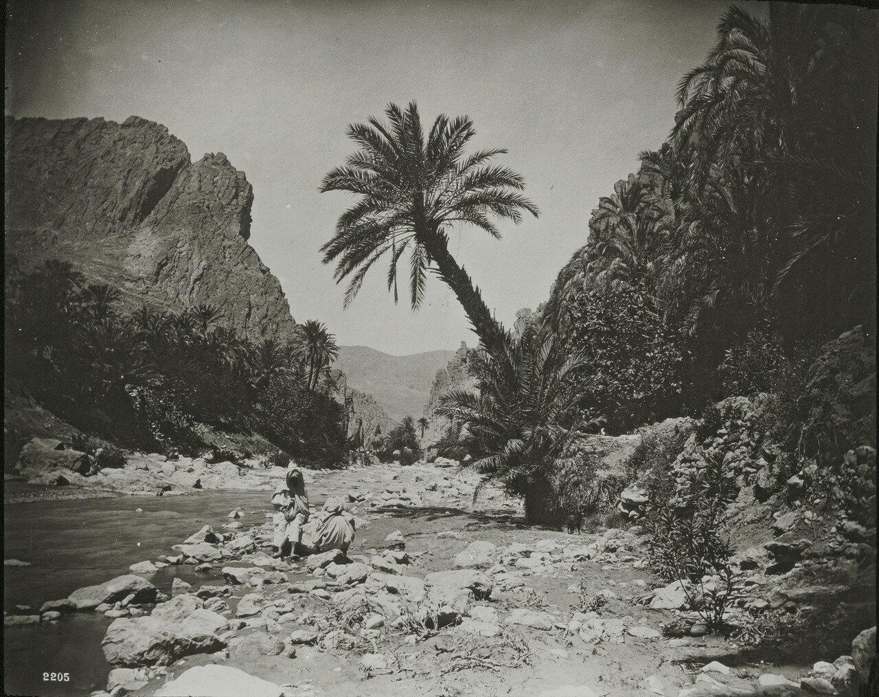 Ущелье в Эль-Кантаре, Алжир
