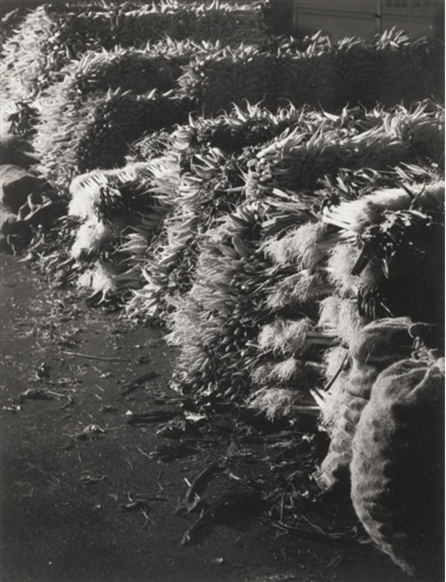 1931. Горы репы и моркови в Ле-Аль, Париж