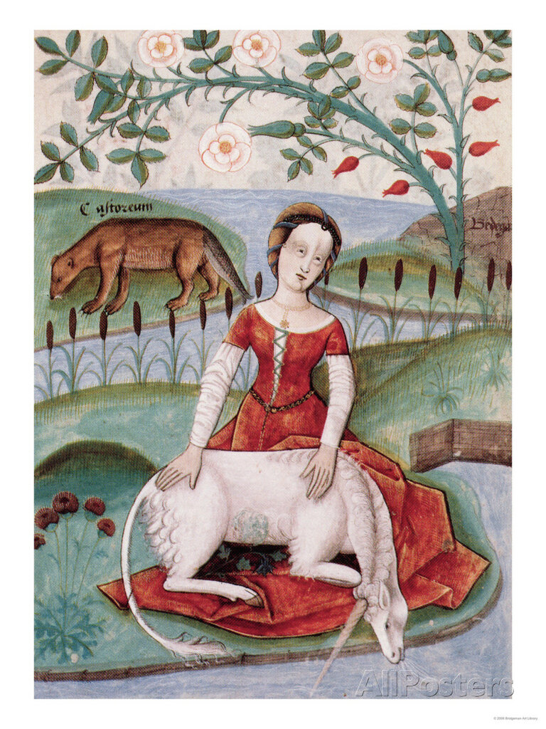 the-young-woman-and-the-unicorn-by-m-platearius.jpg