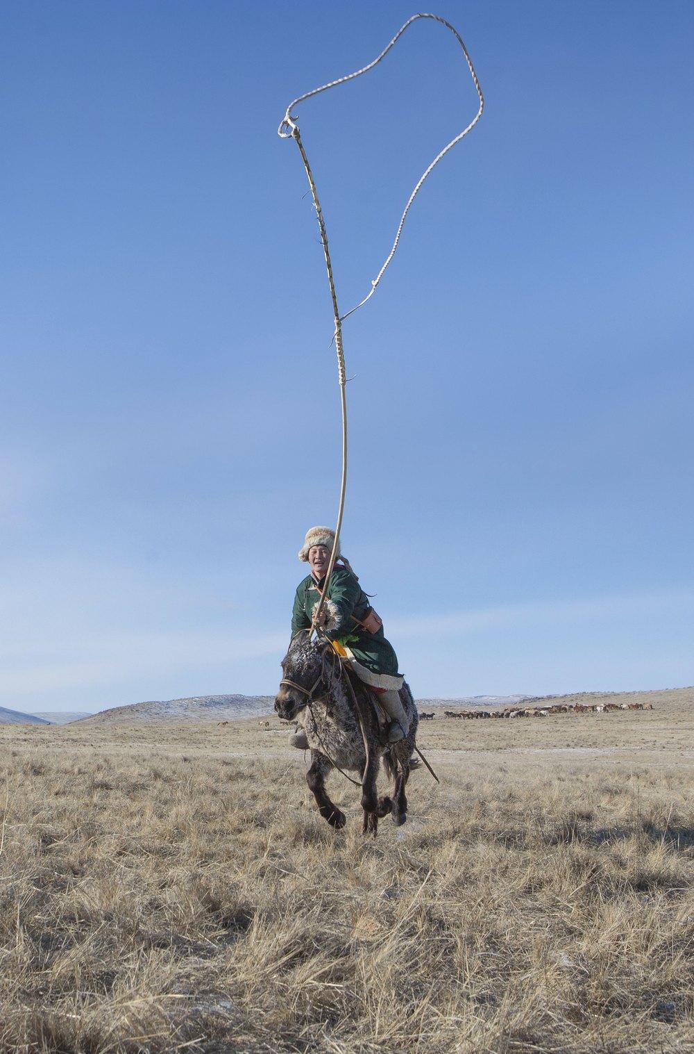 Monogolian Cowboys