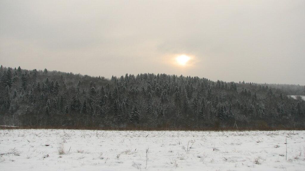 Зимний лес недалеко от Гремячего ключа