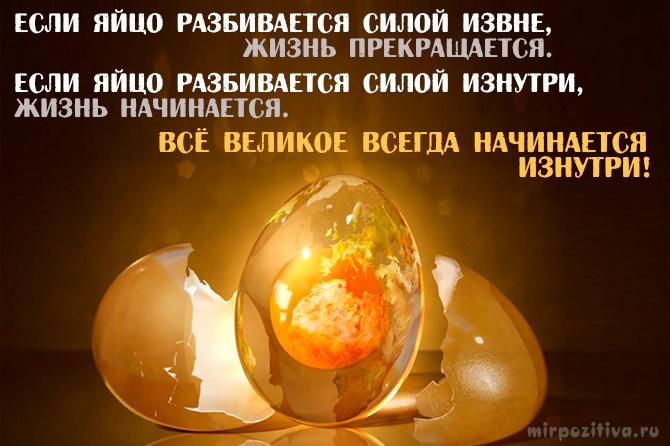 Если яйцо разбивается силой извне, жизнь прекращается. Если яйцо разбивается силой изнутри, жизнь начинается. Все великое всегда начинается изнутри.