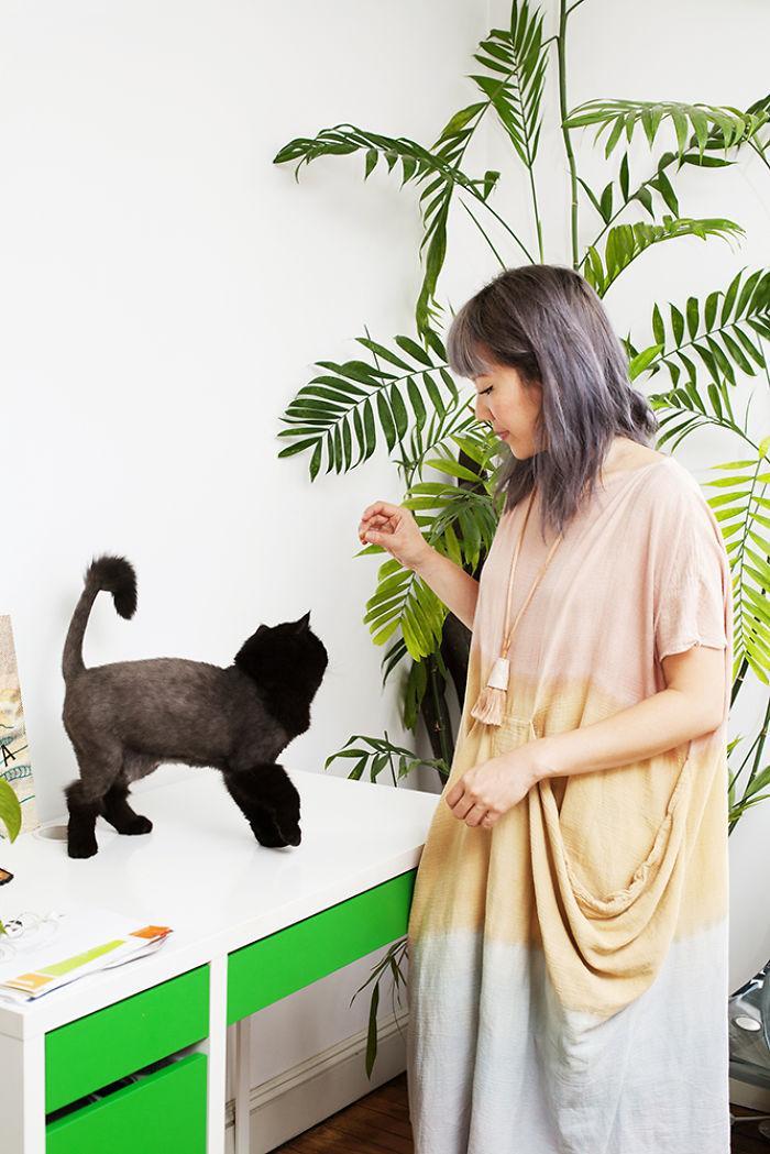 12. Лили и Поло. Бывший хозяин Поло отказался от кошки.