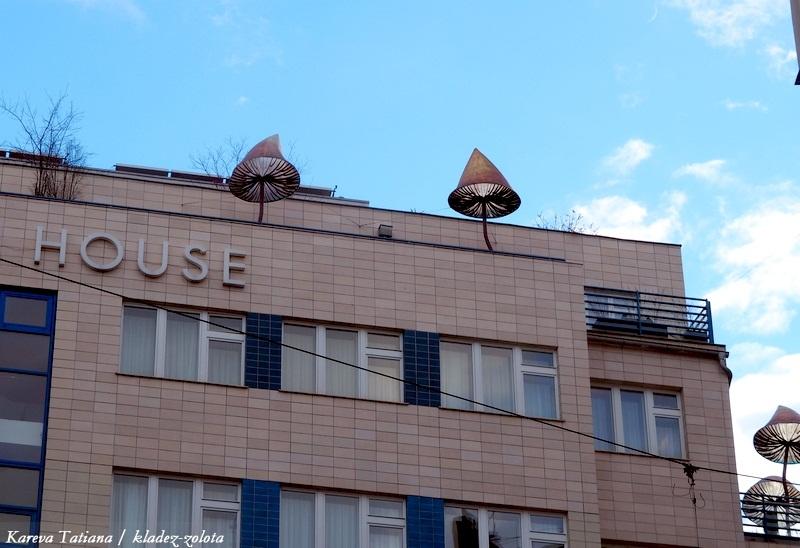 Гигантские грибы, летающие люди