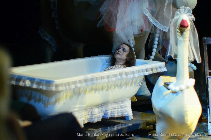 Как Зоя гусей кормила, Саратов, ТЮЗ,  14 января 2016 года