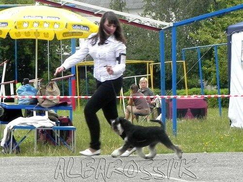 http://img-fotki.yandex.ru/get/6600/10248733.14/0_b78e9_4d8e4248_L.jpg