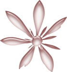 ial_lab_acrylic_flower3.png