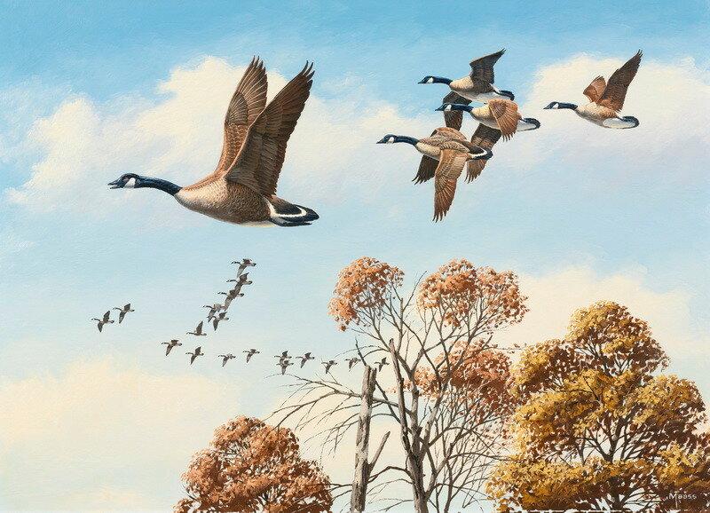 Весна картинки для детей птицы