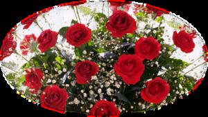http://img-fotki.yandex.ru/get/6600/39663434.183/0_776ca_31f32d28_M.png
