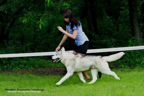 http://img-fotki.yandex.ru/get/6600/52493620.22/0_7ef6c_68eedc85_L.jpg