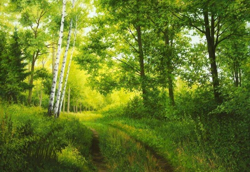 Шевчук Николай.  Опушка леса