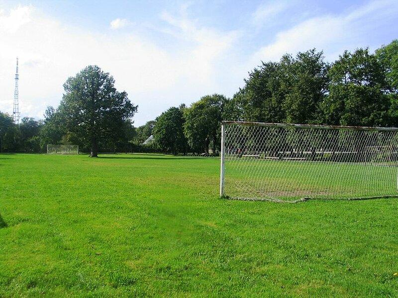 Оригинальное футбольное поле